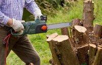 Culte des destructeurs d'arbres